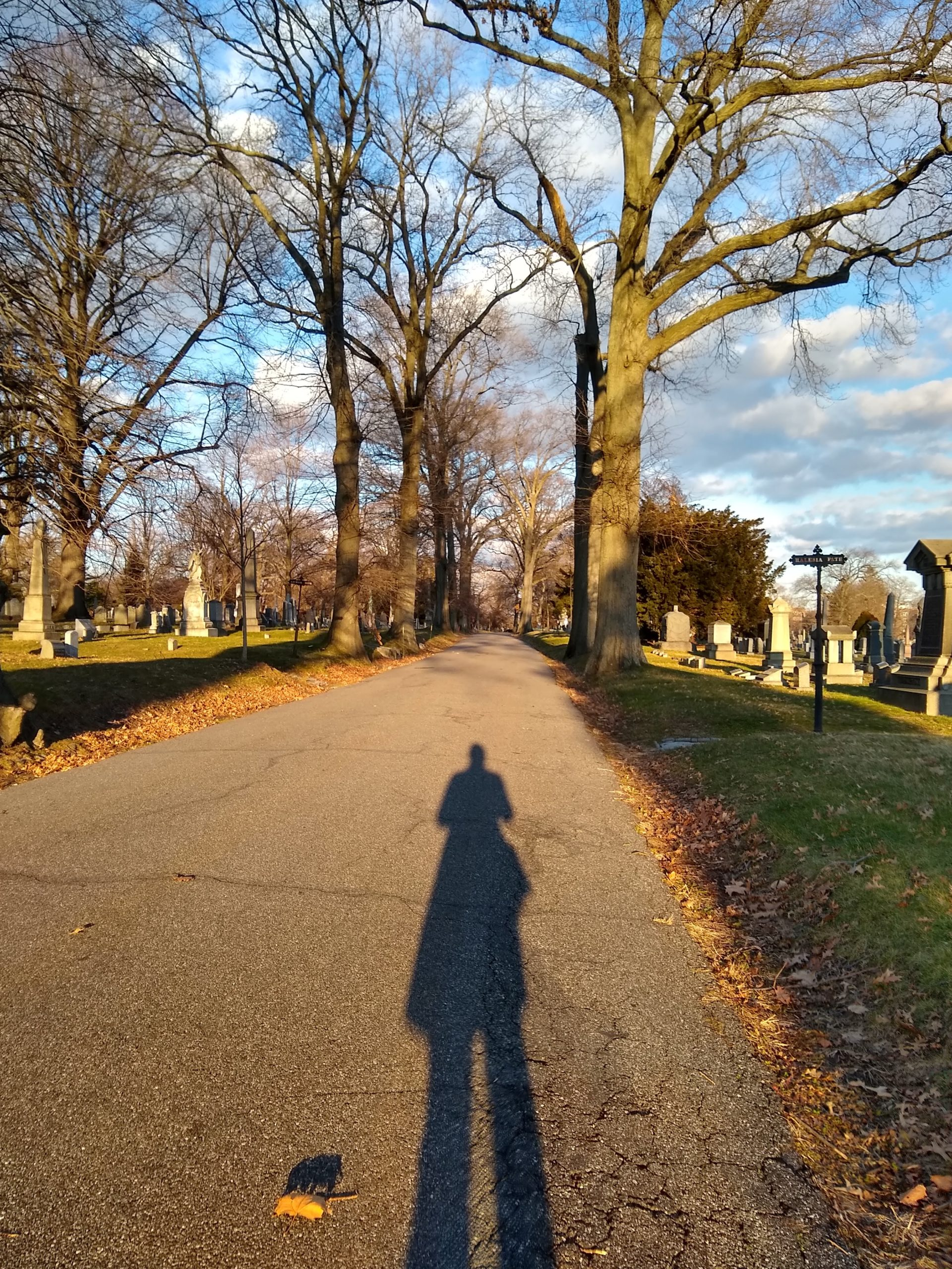 The silhouette of a person on a path through a wooded cemetery.
